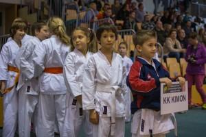 Karate turnir Žirovnica 9.11.2014